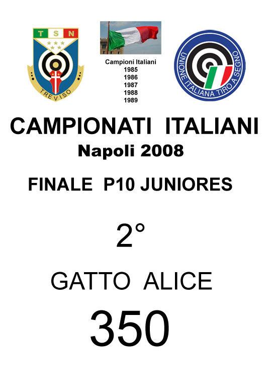 2008 Gatto Alice P10